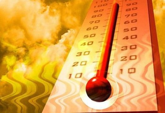 گرما زدگی ۳۵ نفر در ریگان