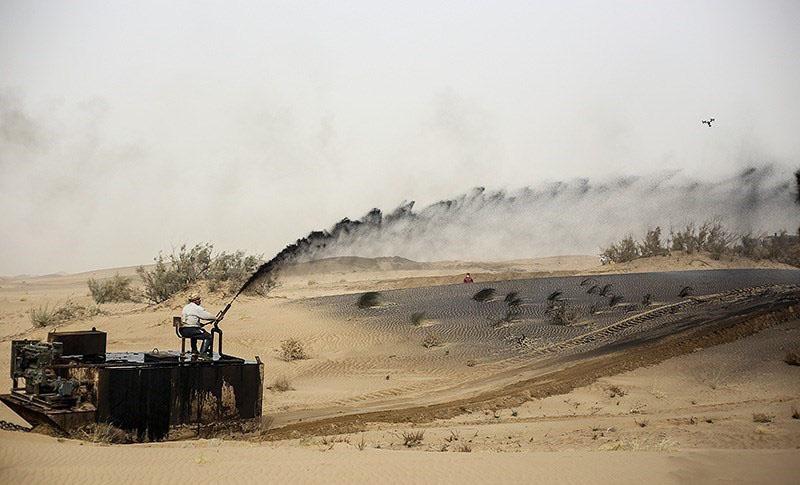 مالچ پاشی ۱۱ هزار هکتار از اراضی شرق استان در سال آینده