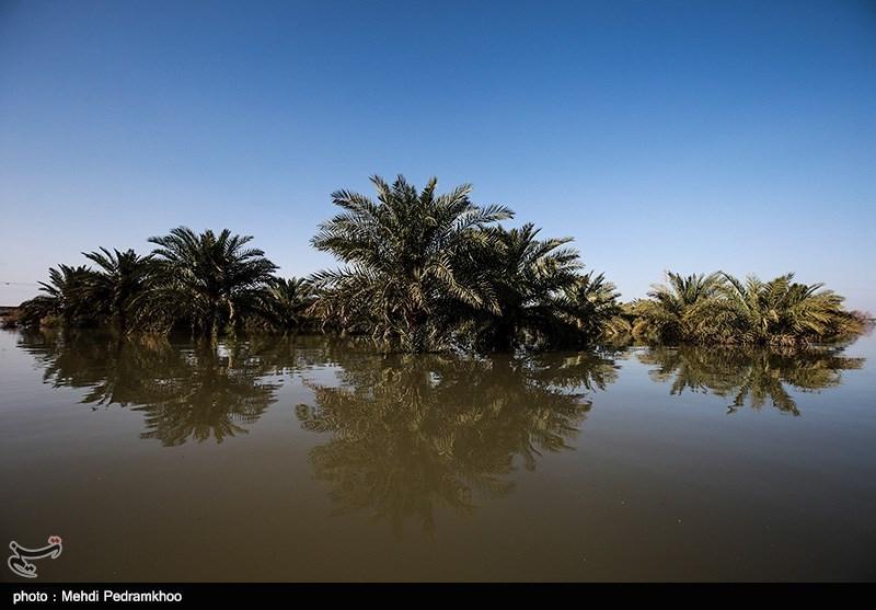 کنترل سیلاب در رودخانههای شرق استان کرمان به ۵۵۰ میلیارد ریال اعتبار نیاز دارد