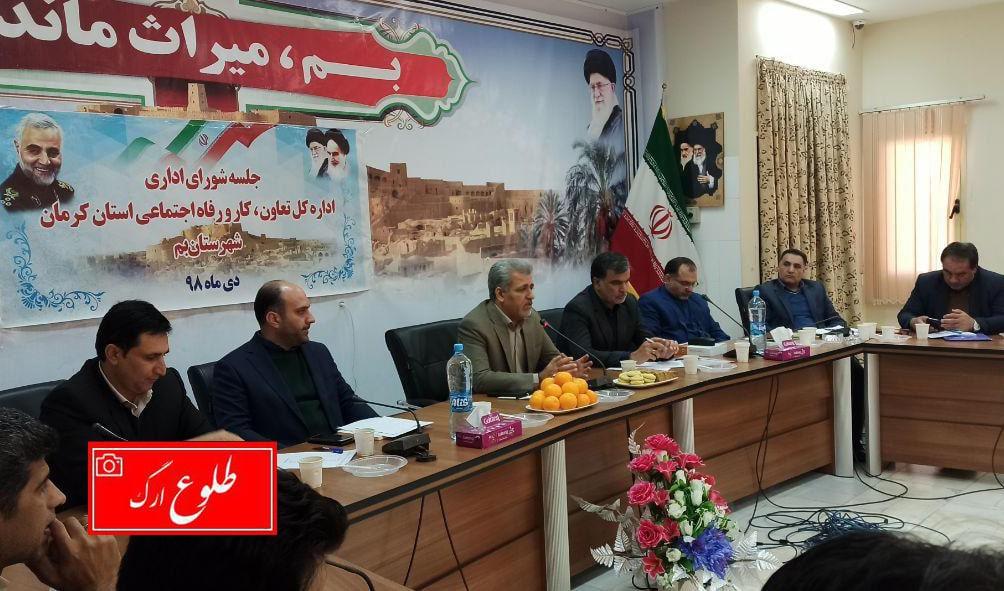 ۱۰ درصد اقتصاد استان کرمان، در بم شکل می گیرد که این عدد بسیار بزرگی است.