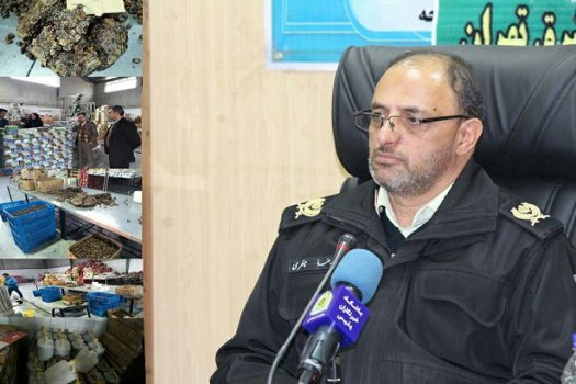 کشف ۶۶۲ کیلوگرم مواد مخدر در عملیات مشترک پلیس شهرستان بم  و استان هرمزگان