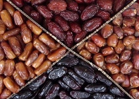 صادرات خرما افزایش یافت، مصرف داخل کاهش/ خواص خرما؛ مشتریان خارجی را در ایام کرونایی افزایش داد