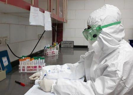 ۳۵ درصد تست های PCR در استان کرمان مثبت است/ دورکاری ها رعایت نمی شود